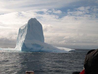 First Iceberg!