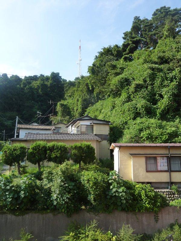 A vieuw from the garden at Sendai Guest House