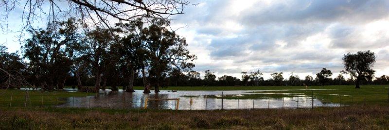 Water on Fields