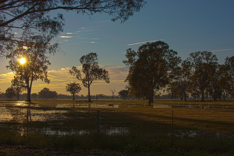 Sunrise At Benalla