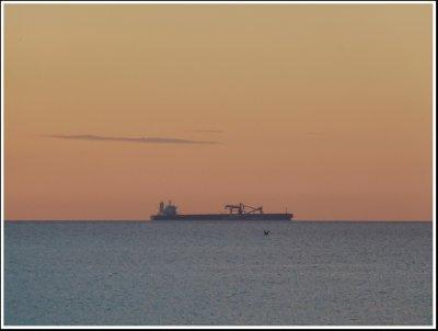 The Cape-size bulk carrier