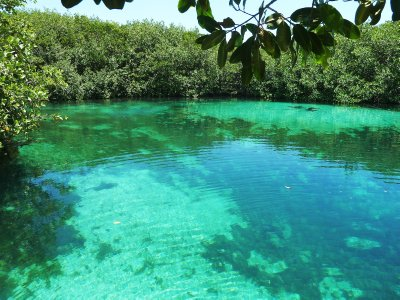 2__Cenotes..um__003.jpg