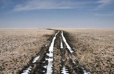 Salt collecting in the tire tracks in the White Rann