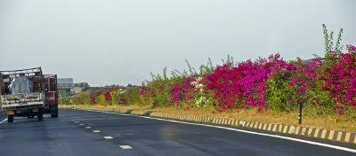 Meridian along Gujarat highway