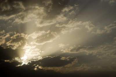 Dawn in Satpura