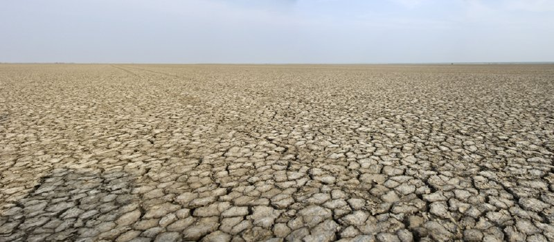 The cracked flats of the Little Rann of Kutch