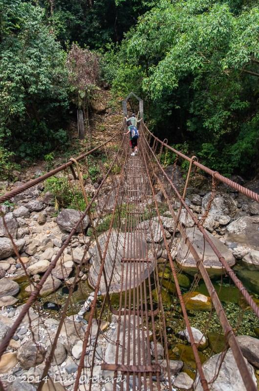 Crossing the 2nd wire bridge
