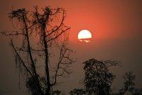Lovely Assam Sunset