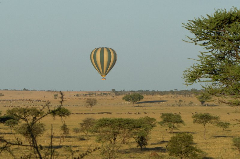 2013-03-17 - Tanzania - 1 - Serengeti - (2) - Lemala Camp