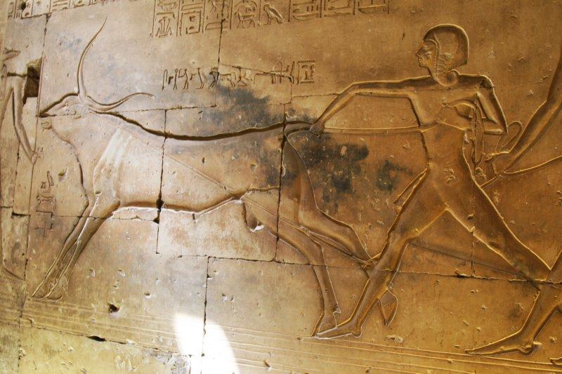 Abydos 2