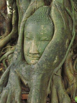 Buddha, Ayutthara, Thailand