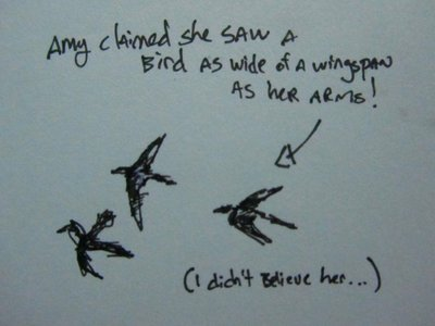 Birds in Halong Bay