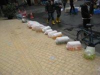 A bag of fish anyone?