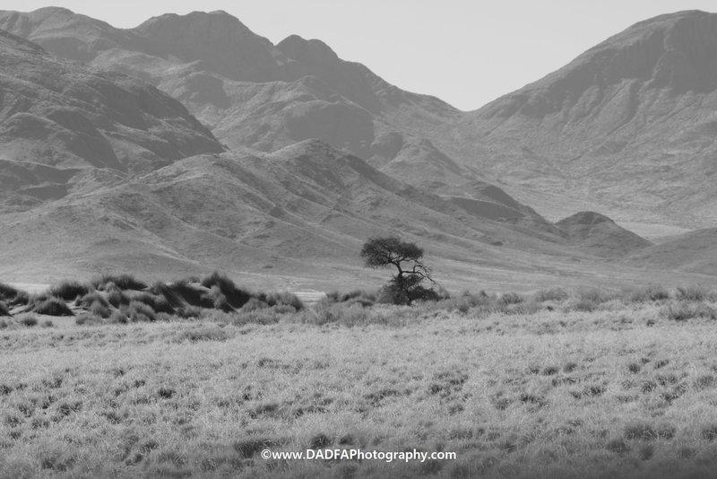 Namib Nakluft Wilderness