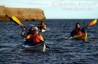 Activities at Puerto Piramides, Valdes Peninsula, Patagonia Argentina