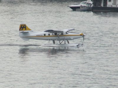 One of the many seaplanes in the area.