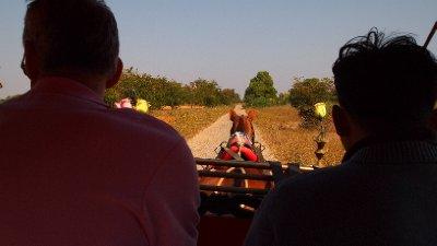 Myanmar: Bagan