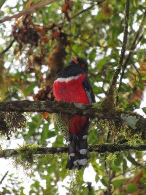 Ecuador_084.jpg