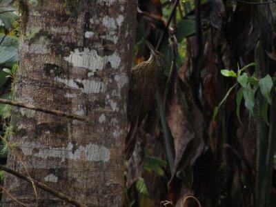 Ecuador_085.jpg