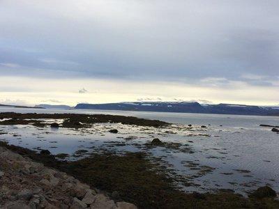 fjord Mjoifjordur