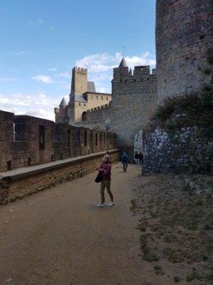 Carcassonne -Cite Medievale (6)