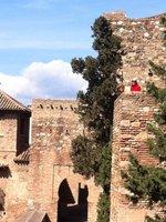 Malaga_-_J..he_Alcazaba.jpg