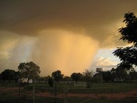 Rainstorm over the working Cattle Station