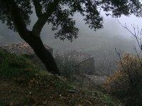 My_quinta6.jpg