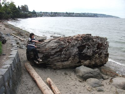 Catherine chilling on some driftwood