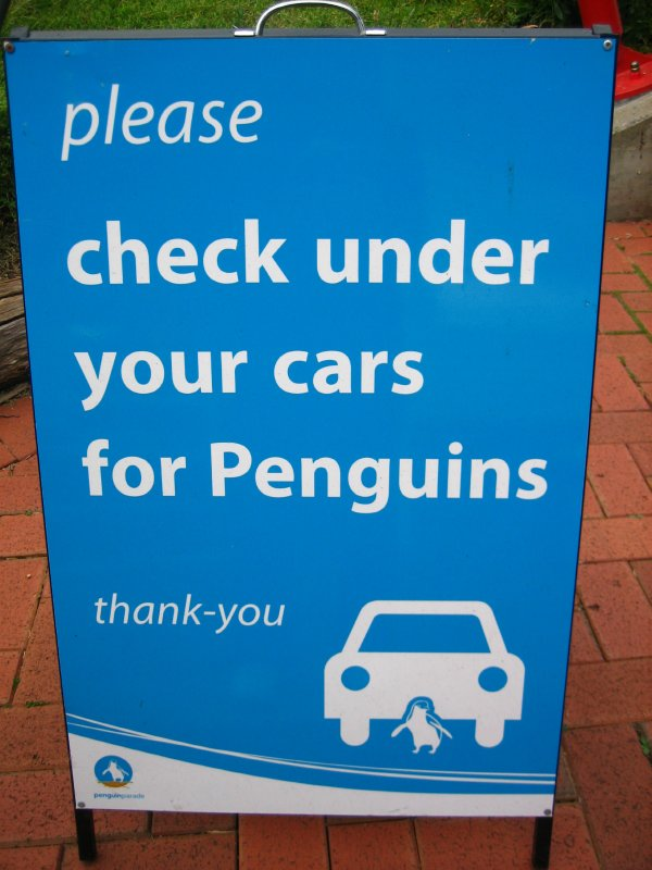 Sign in the parking lot at the penguin parade