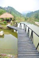 The garden hut