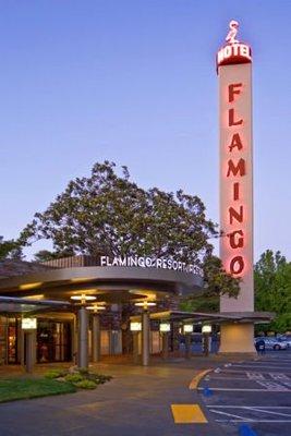 Flamingo_Enterance_J.jpg
