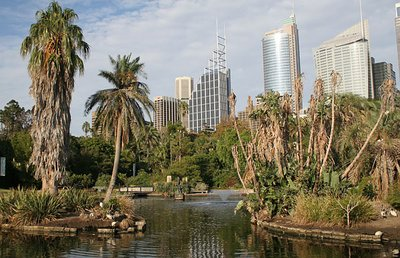 Sydney_Bot..Gardens.jpg