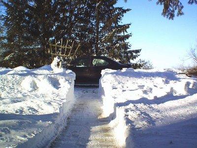 Beanermobile Hates Snow