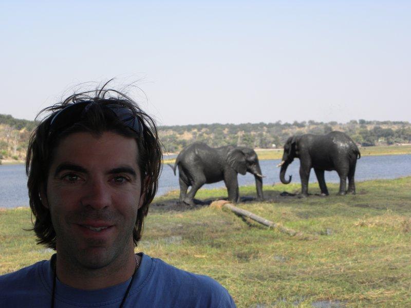 Elephants in my back