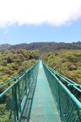 Tree-top walkways at Selvatura