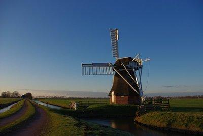 EEBE, Netherlands 2013 4