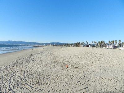 35_-_venice_beach.jpg