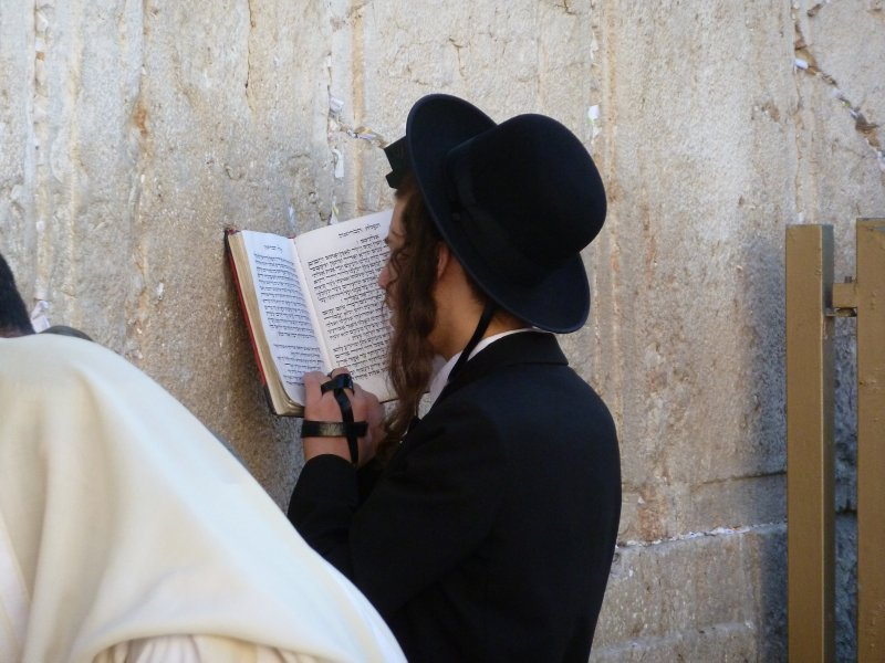 Prayer At The Wailing Wall State Of Palestine