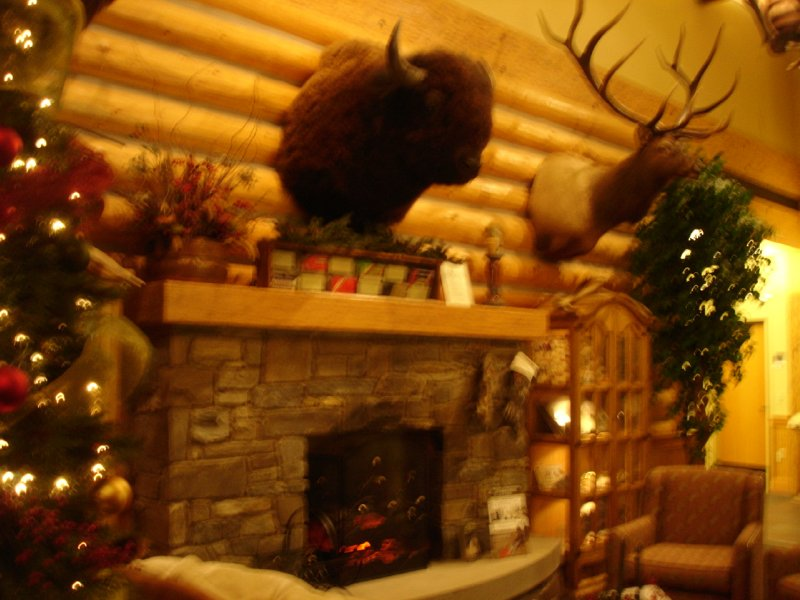 A Bison Head over a Fireplace