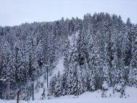 Snowbowl Ski Area