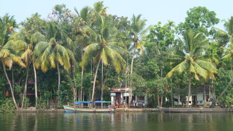 backwaters of Alleppey