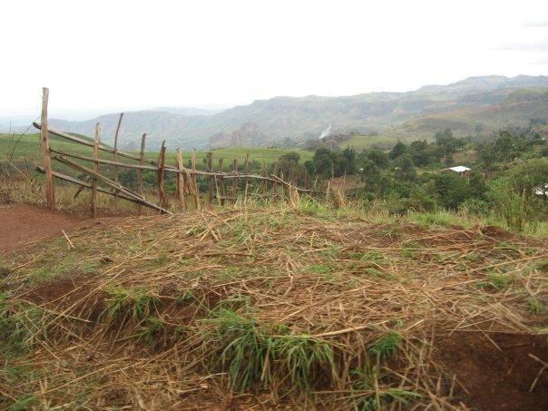 Shanty Fence