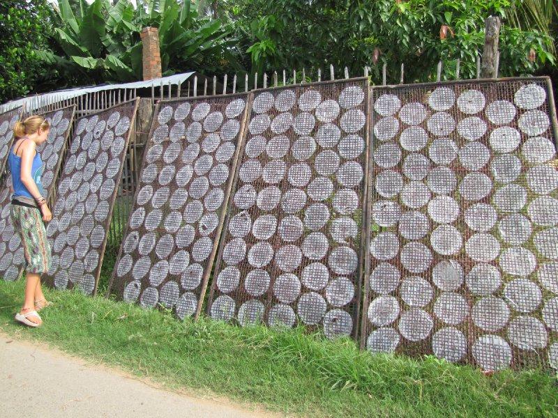 Battambang (17)