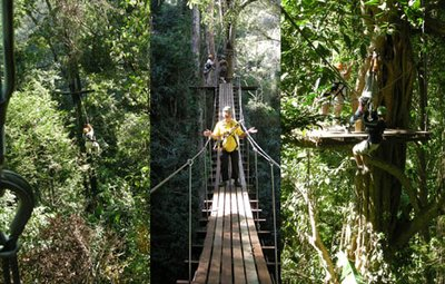 Zip line adventure near Chiang Mai Thailand