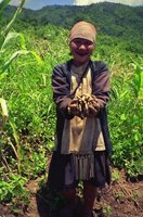 Akha hill tribe lady farmer in her field in north Thailand.