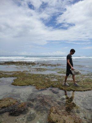 Vidar på Bathsheba beach1