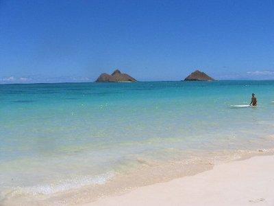 hawaii62a.jpg