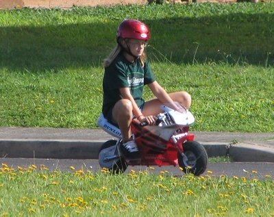 pocketbike5.jpg