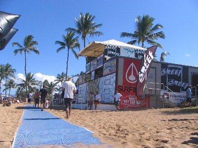 surfing2007d.jpg